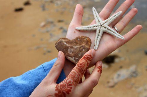 Coquillages et henné sur une plage d'Iran